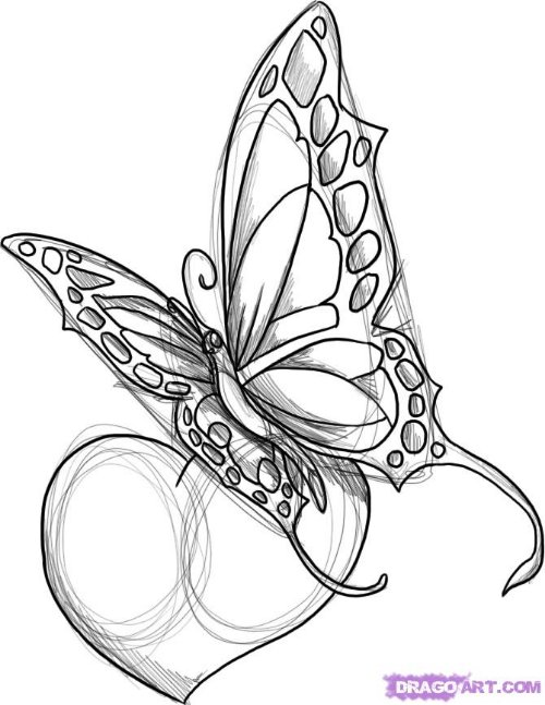 Heart And Butterfly Tattoo Design