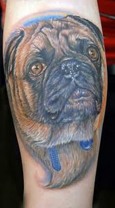 Dog Tattoos Design