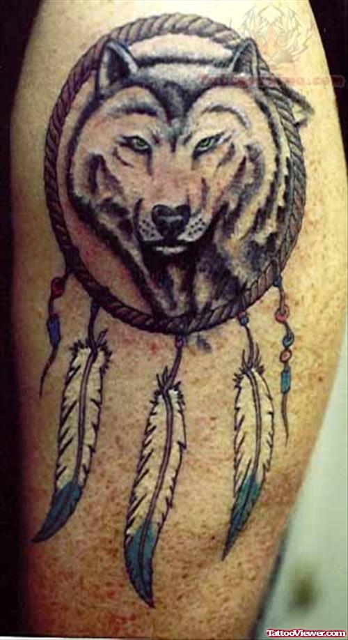 Dream Catcher David Tattoo