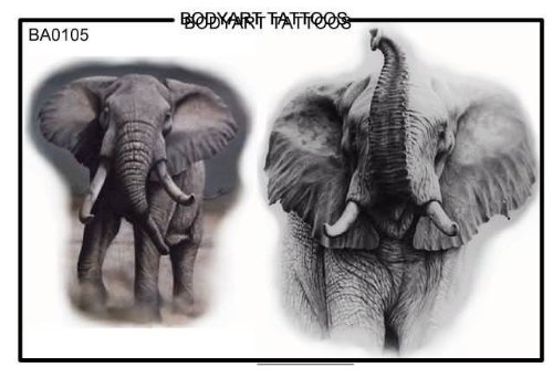 Elephant Tattoos Pictures