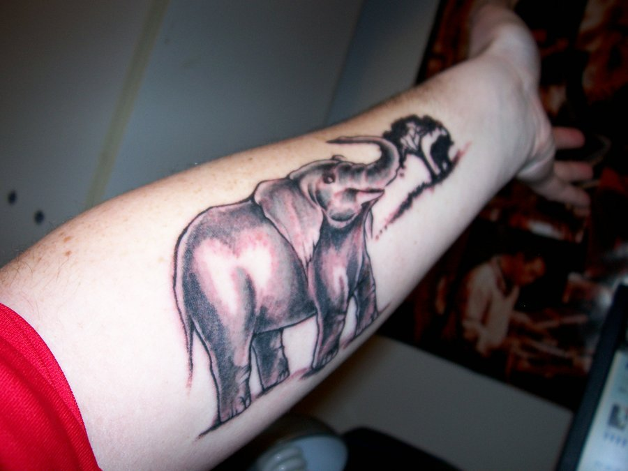 Small Tree And Elephant Tattoo On Left Forearm