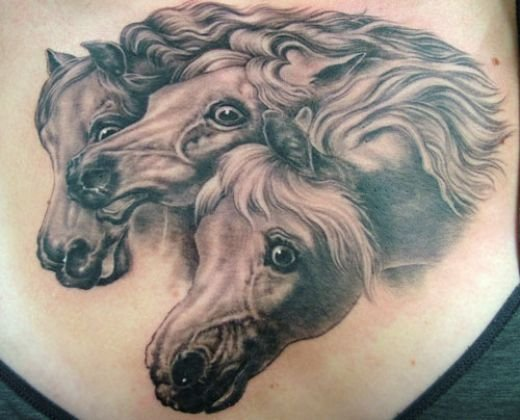 Grey Ink Horse Head Tattoos On Chest