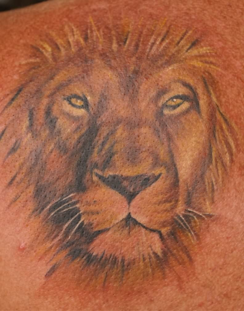 Lion Head Tattoo By Tattoostime