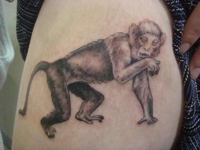 Amazing Monkey Tattoo On Shoulder