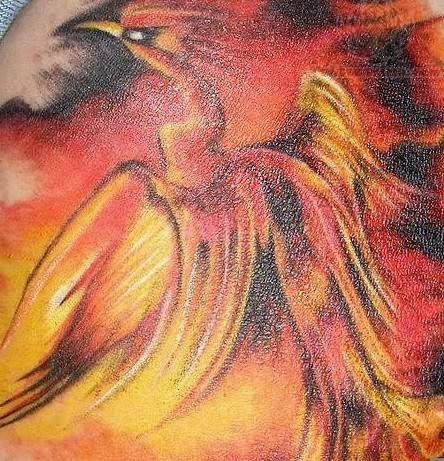 Phoenix Closeup Tattoo