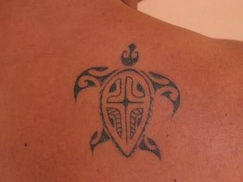 Stylish Turtle Tattoo On Back Shoulder